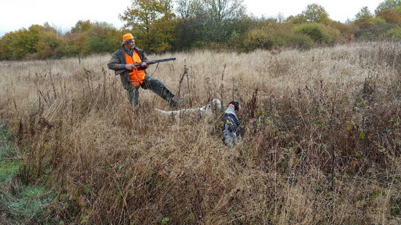 en action de chasse